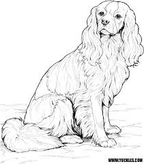 dog coloring pages yuckles husky dog coloring pages husky dog