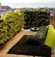gem se pflanzen balkon gemüse auf dem balkon einen hochbeet garten anlegen