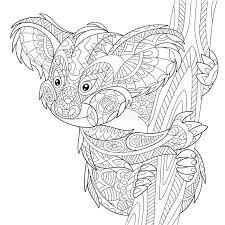 koala bear coloring page zentangle stylized koala bear stock vector image 70822461