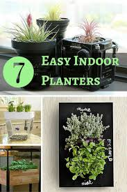 253 best indoor gardening bob vila u0027s picks images on pinterest