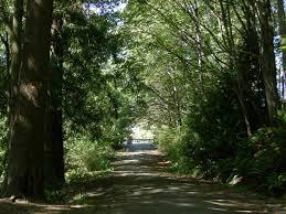 Fauntleroy Park West Seattle Parks Amp Recreation by Schmitz Park Seattle Wikipedia