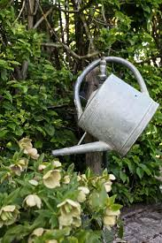 486 best watering cans and more images on pinterest watering
