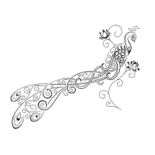 best 25 small peacock tattoo ideas on pinterest small feather