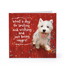 dog birthday card sayings my birthday pinterest surprise