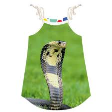 compare prices on snake costume child online shopping buy low