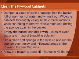 Bleaching Kitchen Cabinets How To Clean Plywood Kitchen Cabinets