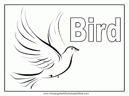 coloring pages birds coloring