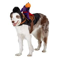 headless horseman costume headless horseman costume for dogs