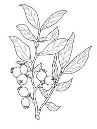coloring pages tattoos 50328 huckleberry lg gif 1024 918 tattoos pinterest