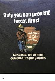 Only You Can Prevent Forest Fires Meme - only you can prevent forest fires national park service seriously