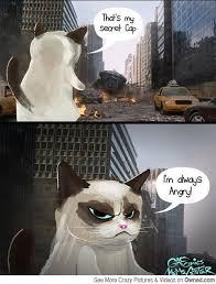 that s my secret cap cat meme cat planet cat planet