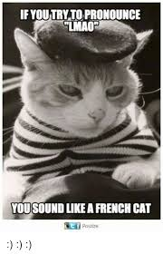 How To Pronounce Meme In French - if youtryto pronounce lmao you sound like a french cat ce f postize