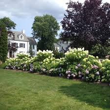 Home Design Services by Landscaping Services Landscape Design Mcardle U0027s Greenwich Ct