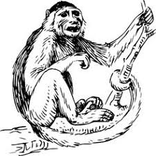 howler monkey coloring pages mural monkey