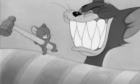 tom jerry teeth gif u0026 share giphy