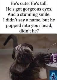 Baby Monkey Meme - puppy monkey baby album on imgur