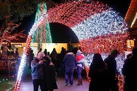 Zoo Lights Seattle by Warm Beach And Warm Hearts The Lights Of Christmas Heraldnet Com