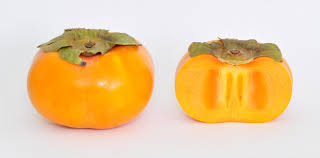 persimmon wikiwand