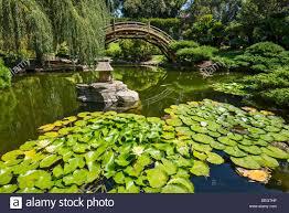 Botanical Gardens Huntington The Beautiful Japanese Garden Of The Huntington Library And
