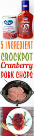 crockpot cranberry pork chop recipe 5 ingredients the frugal