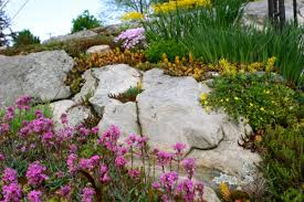 Pictures Of Rock Gardens Landscaping by Carolyn U0027s Big Rock Garden In Massachusetts Fine Gardening