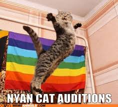 Nyan Cat Meme - nyan cat auditions cat meme cat planet cat planet