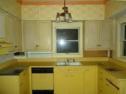 Great Kitchen Cabinets Ikea Kitchen Cabinet Boxes Decorating Your Home Design With
