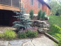 Backyard Improvement Ideas Download Backyard Remodel Ideas Garden Design