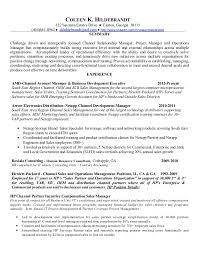 Channel Sales Manager Resume Sample by Resume And Software And Sales And Enterprise And Storage