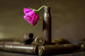 bullet flowers us army to create biodegradable bullets that turn into flowers
