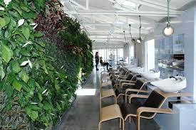 home decor stores nz vertical gardens and their benefits u2013 the smart home decor