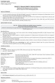 curriculum vitae software engineer templates free software developer resume template sle software developer