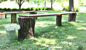 bench wooden bench around tree fearsome white circular tree