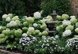 Shade Garden Ideas Hydrangea Shade Garden Ideas 18 Awesome Hydrangea Garden Ideas