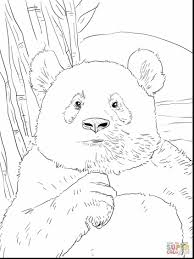 remarkable printable panda coloring pages with panda coloring
