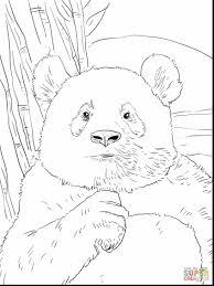 impressive kung fu panda coloring pages panda coloring pages
