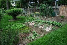 backyard suprising backyard garden as well as english garden