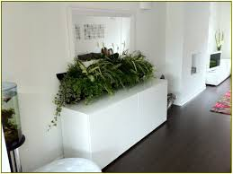 Hanging Wall Planters Wall Hanging Planters Home Design Ideas