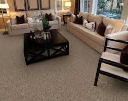 stainmaster 21286 portico carpet