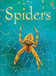 bugs u201d at usborne children u0027s books
