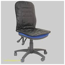 Orthopaedic Seat Cushion Desk Lumbar Support For Desk Inspirational