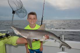 shark fishing in orange beach is fun for the entire family