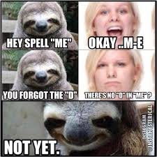 Rapist Sloth Meme - funny sloth rape memes hey spell me okay m e you forget the d
