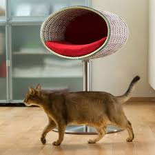 Unique Cat Furniture Cat Tree Cat Cushion Cat Pillow Designer Cat Bed And Furniture