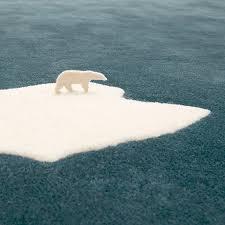 global warming polar bear rug freshome com