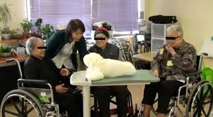 jrp use of a therapeutic socially assistive pet robot paro in