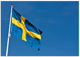 Sweedish Flag Misi
