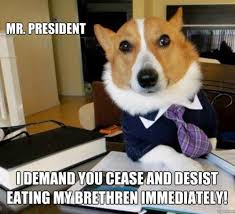 Obama Dog Meme - lawyer dog cease and desist obama the eater of dogs know your meme