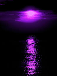 purple pictures purple pictures the violet hour pinteres homes