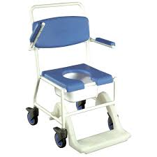 Potty Chairs Bathroom Raised Toilet Seat Lowes For Assists Those With Bending